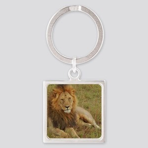 male lion kenya collection Square Keychain
