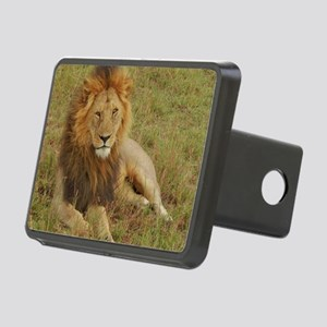 male lion kenya collection Rectangular Hitch Cover
