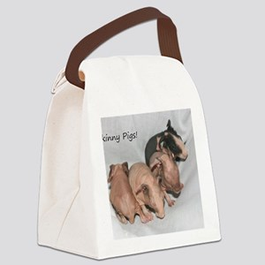 Skinny pigs Canvas Lunch Bag