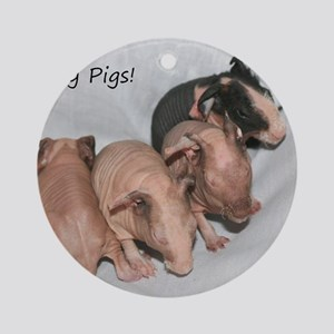 Skinny pigs Round Ornament
