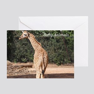 Baby Animals Greeting Card