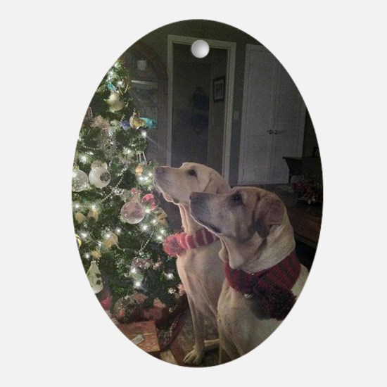 Labrador Holiday Oval Ornament