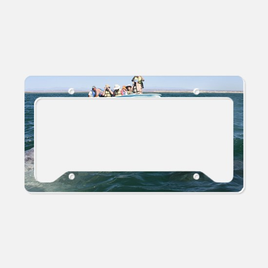Gray Whales License Plate Holder