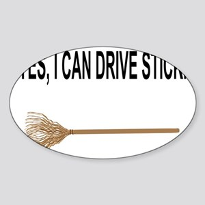 drive stick Sticker (Oval)