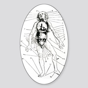 16th century woodcut showing bloodl Sticker (Oval)