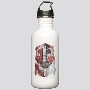 Abdominal spinal nerve Stainless Water Bottle 1.0L