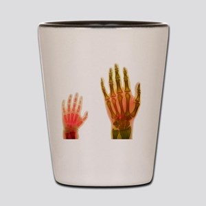 Adult and child hand X-rays Shot Glass
