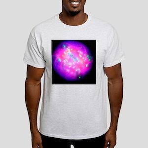 Abnormal mitosis Light T-Shirt