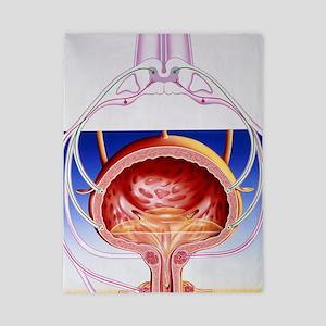 Artwork of a bladder and its reflex arc Twin Duvet