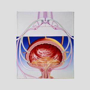 Artwork of a bladder and its reflex  Throw Blanket