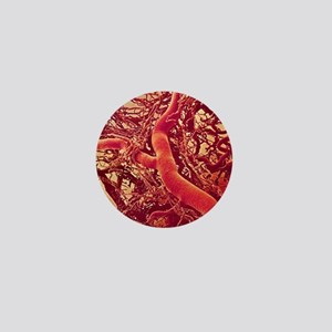 Blood vessels Mini Button