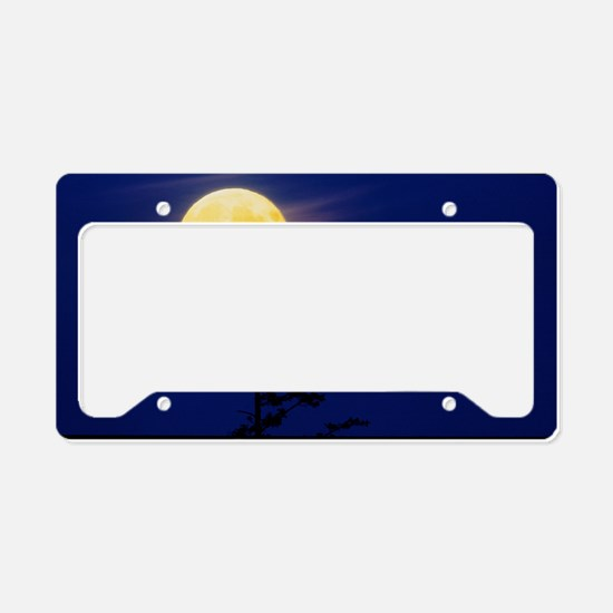 Bald eagles silhouetted again License Plate Holder