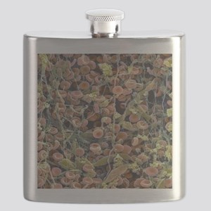 Blood clot Flask