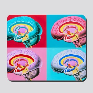 Artworks showing the limbic system of th Mousepad