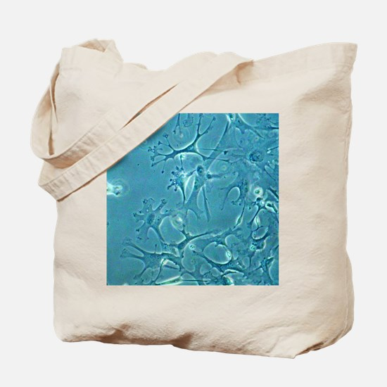 Astrocyte nerve cells Tote Bag