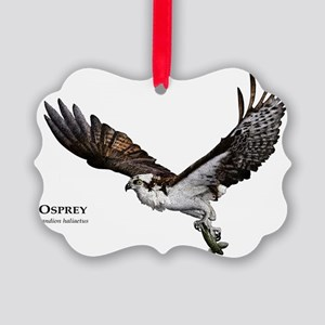 Osprey Picture Ornament