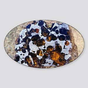Brahin meteorite, 1810 Sticker (Oval)