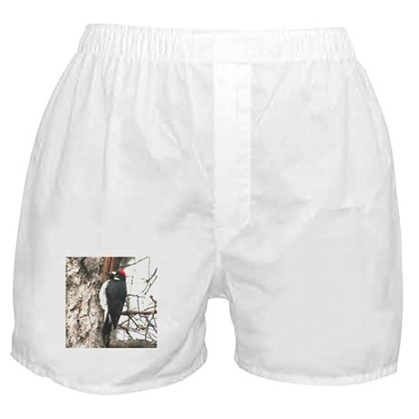 Calif. Redhead Woodpecker Boxer Shorts