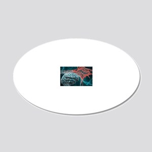 p3250197 20x12 Oval Wall Decal