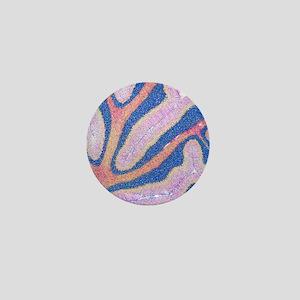 Cerebellum structure, light micrograph Mini Button