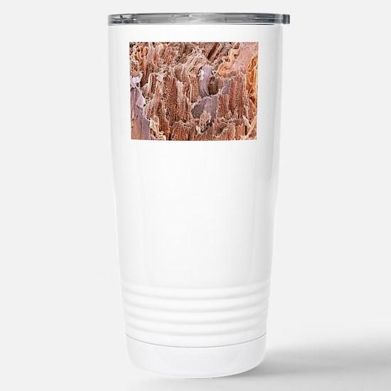 Cardiac muscle, SEM Stainless Steel Travel Mug