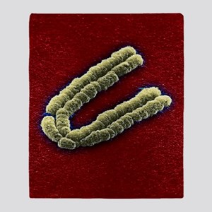 Chromosome, SEM Throw Blanket