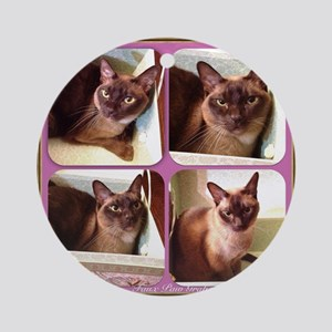 Champagne Burmese box cat x4 Round Ornament