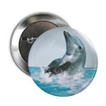 Bubble Dolphin 2.25