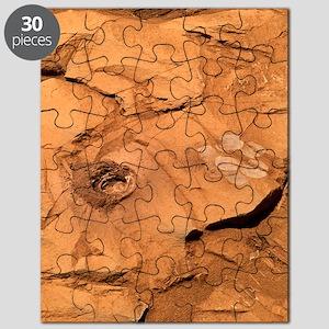 Clovis rock, Mars Puzzle