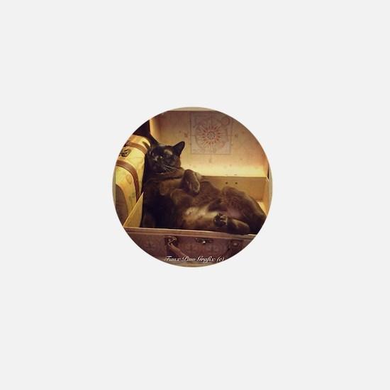 Burmese Cat, Gold Filter, Reclining Mini Button