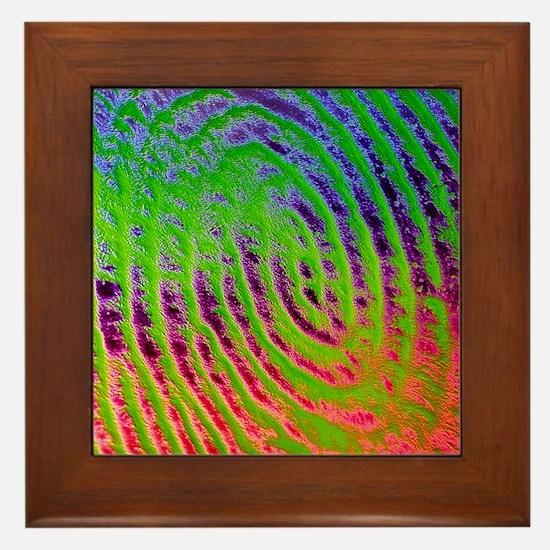 Coloured SEM of details of a human fin Framed Tile