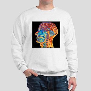 Coloured MRI scan of the human head (si Sweatshirt