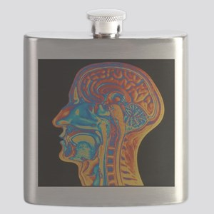 Coloured MRI scan of the human head (side vi Flask