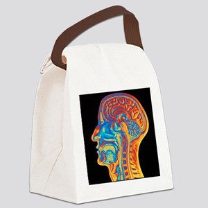 Coloured MRI scan of the human he Canvas Lunch Bag