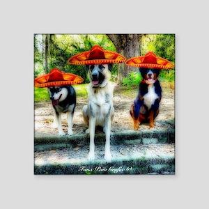 "Three Amigo Dogs Square Sticker 3"" x 3"""