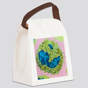 Coloured TEM of a neutrophil from Canvas Lunch Bag