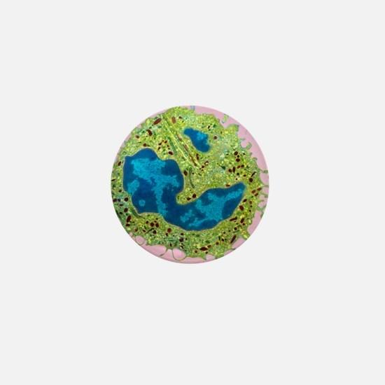 Coloured TEM of a neutrophil from bone Mini Button