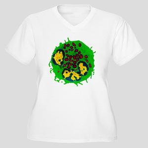 Coloured TEM of a Women's Plus Size V-Neck T-Shirt