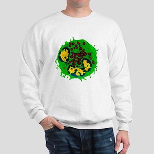 Coloured TEM of a basophil white blood  Sweatshirt