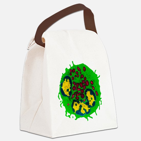 Coloured TEM of a basophil white  Canvas Lunch Bag