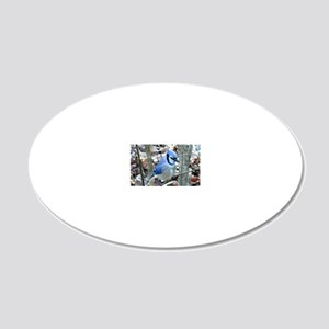 Beautiful BlueJay 20x12 Oval Wall Decal