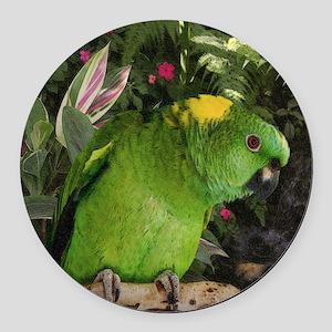 Yellow Nape Amazon Parrot Round Car Magnet