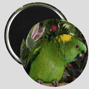 Yellow Nape Amazon Parrot Magnet
