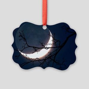 r3400823 Picture Ornament
