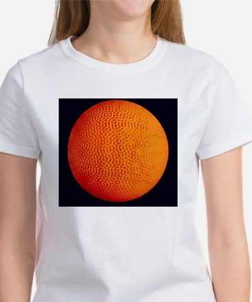 Computer simulation of solar oscil Women's T-Shirt