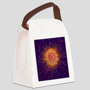 Cultured nerve cells Canvas Lunch Bag