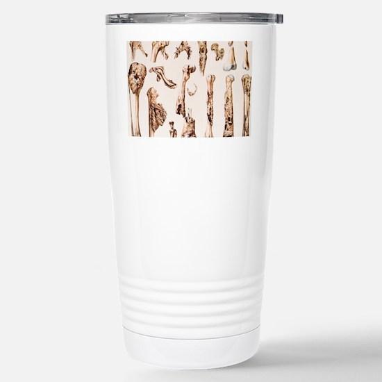 n5040002 Stainless Steel Travel Mug
