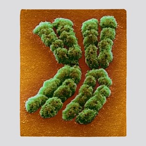 Doubled chromosome, SEM Throw Blanket