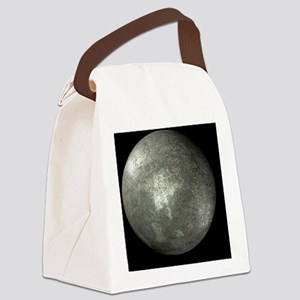 r4500367 Canvas Lunch Bag