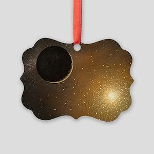 r6500331 Picture Ornament